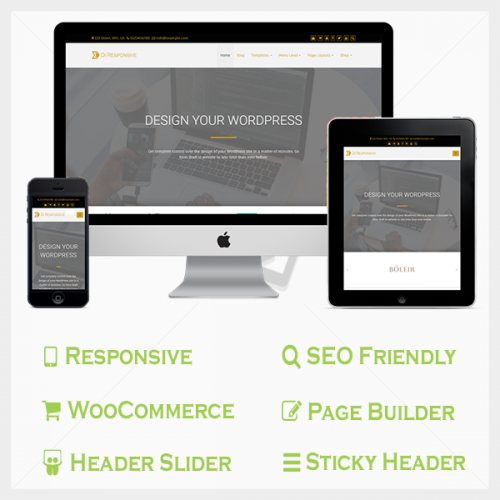 Responsive Pro WordPress Theme